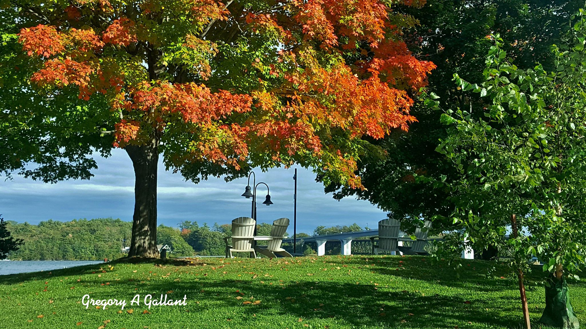 Autumn in Bath Maine